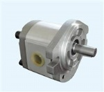 P2 series gear pump