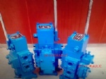 Marine manual directional valve CSBF series CSBF-G25
