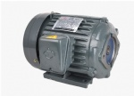 Hydraulic motors series